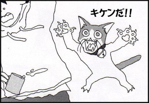 おそいかかる猫