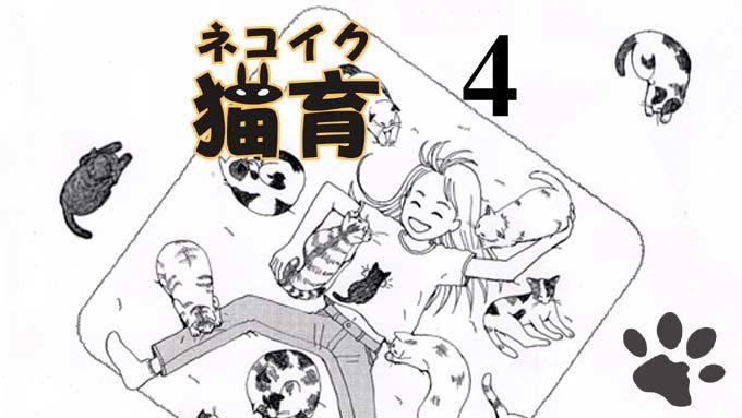 猫漫画:猫育 4話 表紙