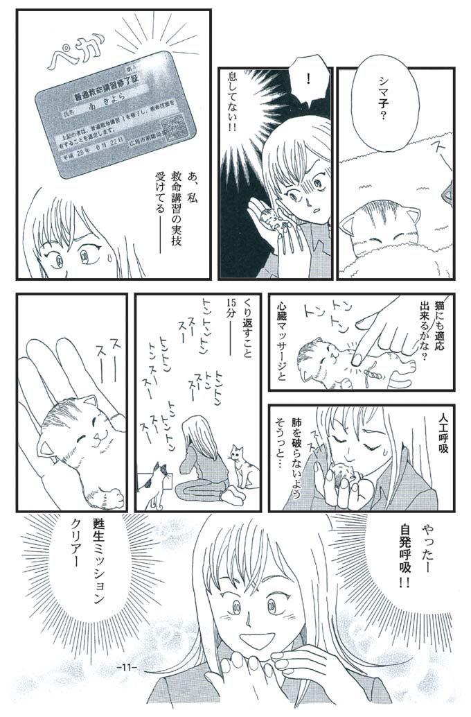 猫漫画:猫育 4話 内容 甦生ミッションクリア