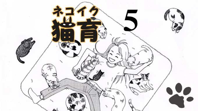 猫漫画:猫育 5話 表紙