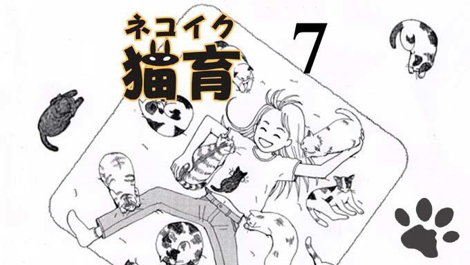 猫漫画:猫育 7話 表紙